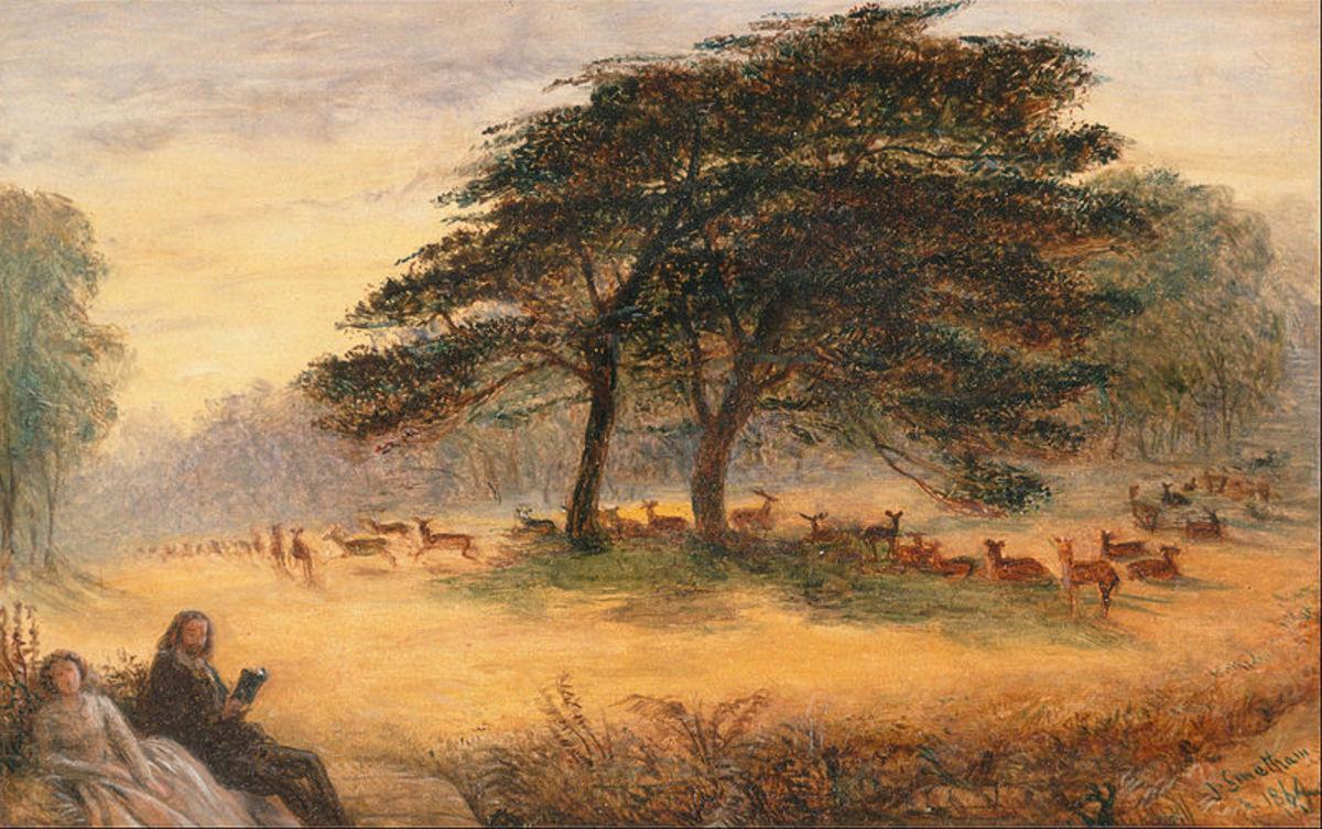 Lovers in Richmond Park - (Windsor Park)