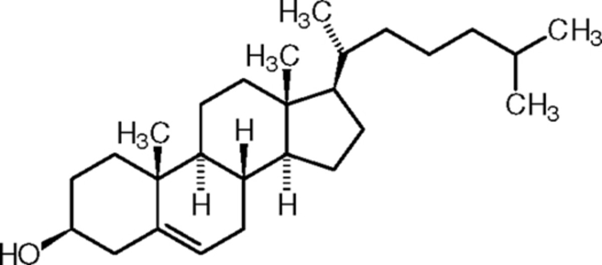 lipids-fats-and-oils
