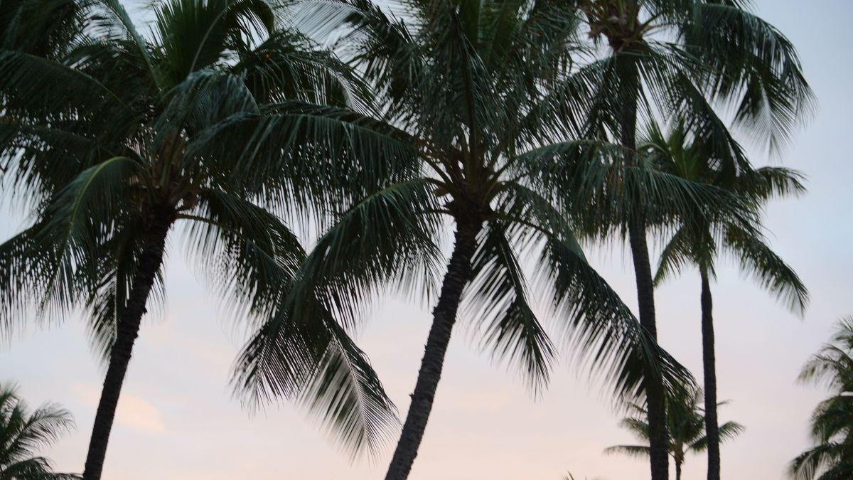 Beautiful Hawaiian skies at a luau on Oahu