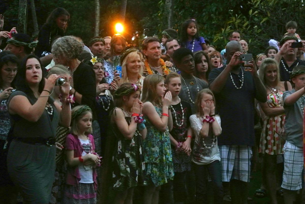 Reacting to the emu ceremony, displaying the cooked pig at a luau