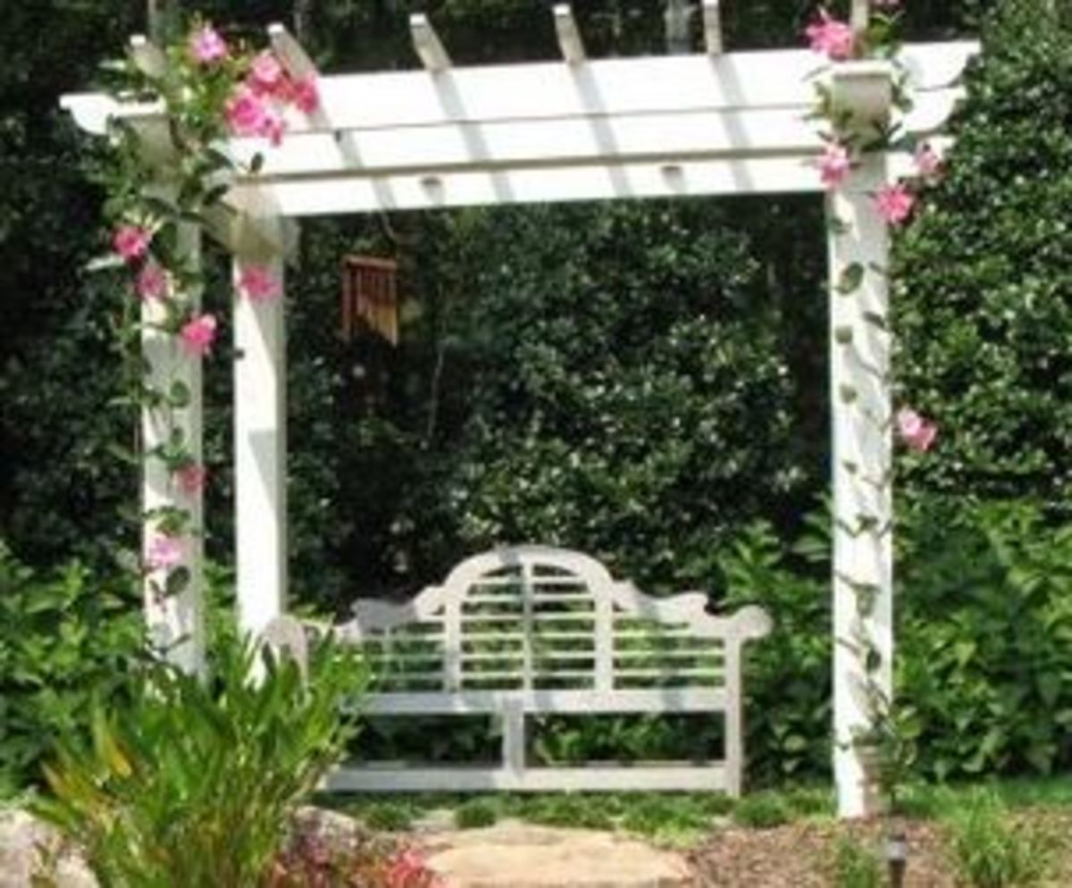 Victorian settee sitting underneath a white arbor with climbing roses