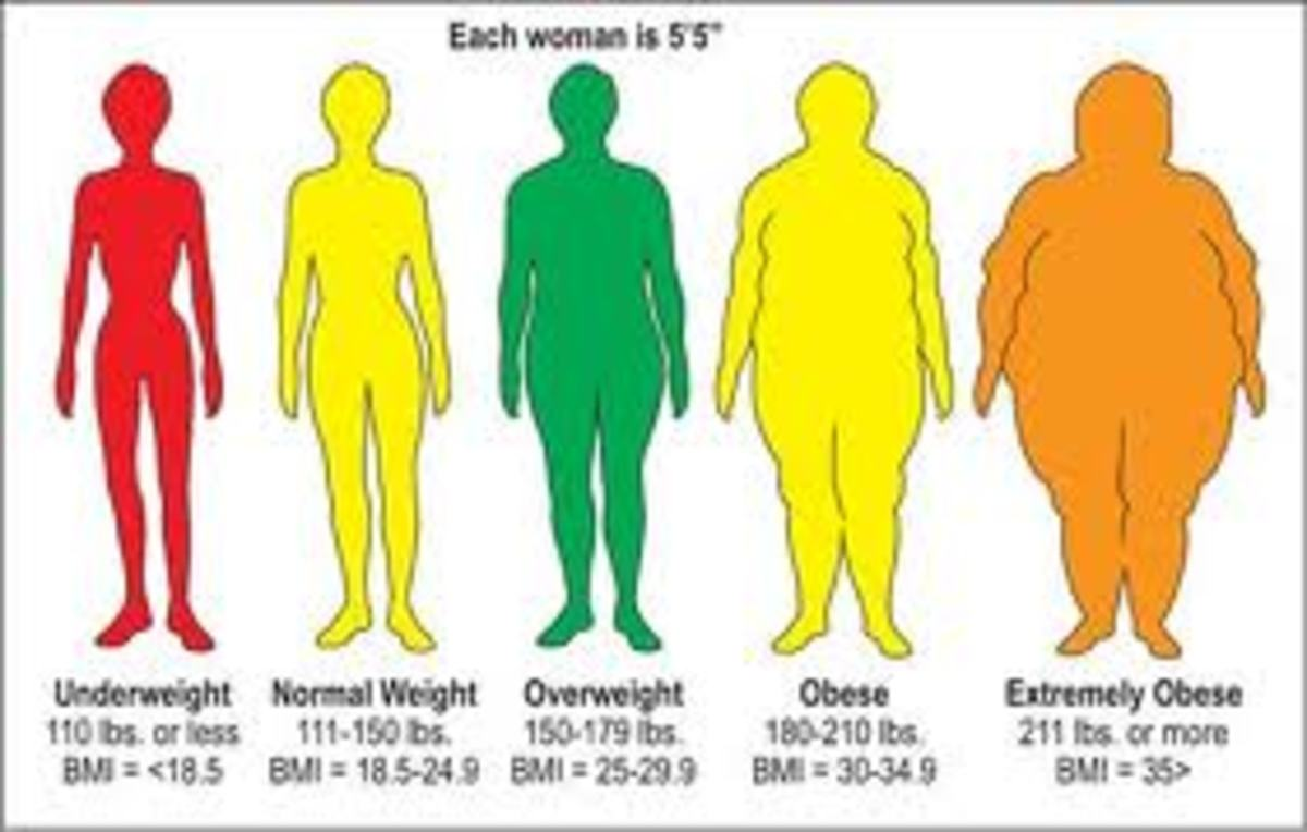 colorful chart showcasing the weight and BMI and the categories of weight ranging from underweight to normal to obese