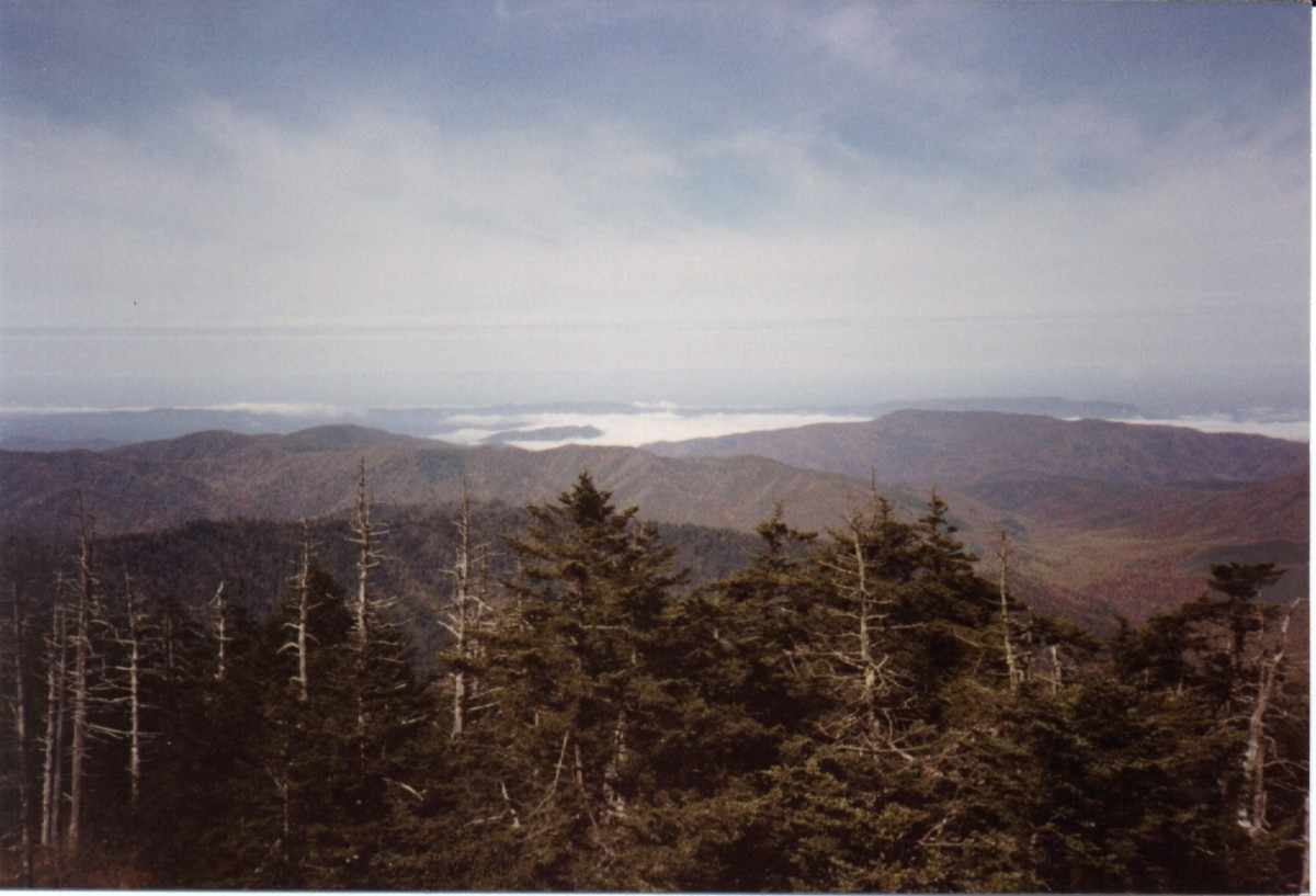 The view from Clingman's Dome