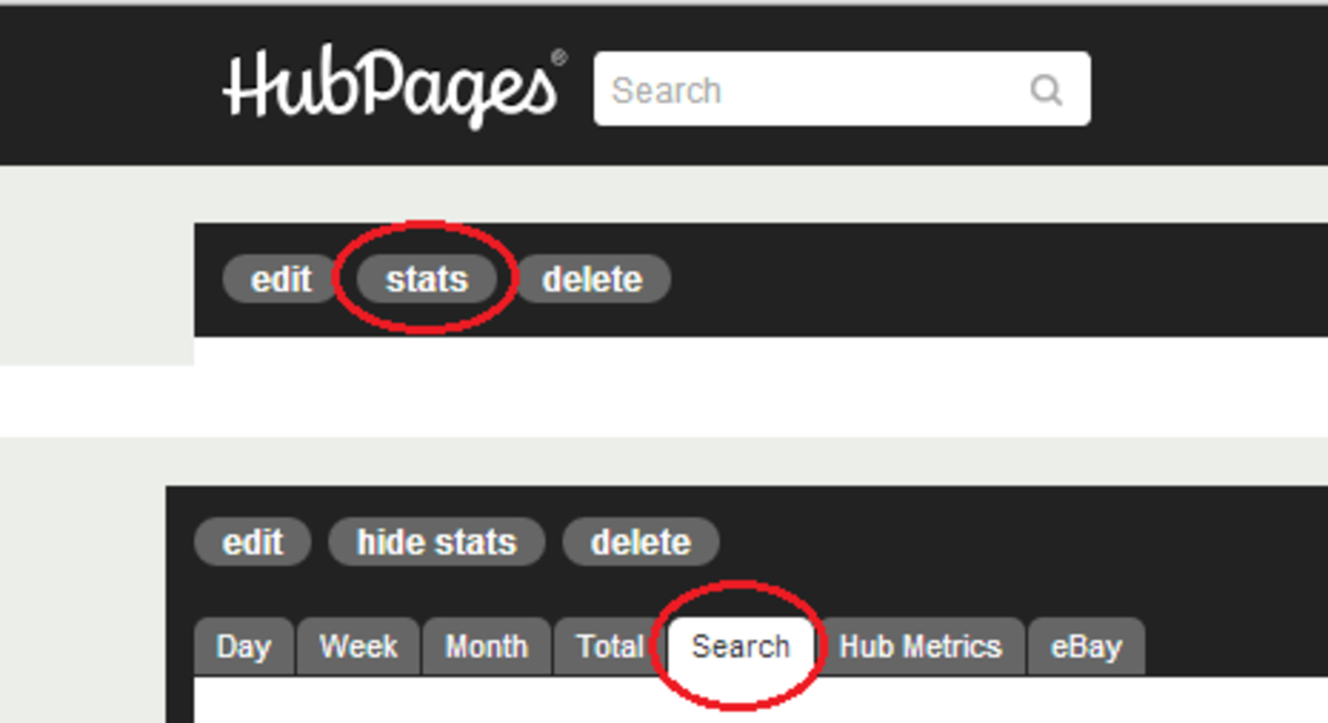 Hubpages article stats - Search terms