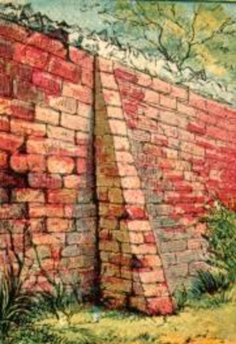 Drawing of a red brick garden wall. We see a tree peaking out over the top of the wall and some grass growing on the outside. What wonders could be hiding behind these bricks? Joseph Martin Kronheim (1810-1896)