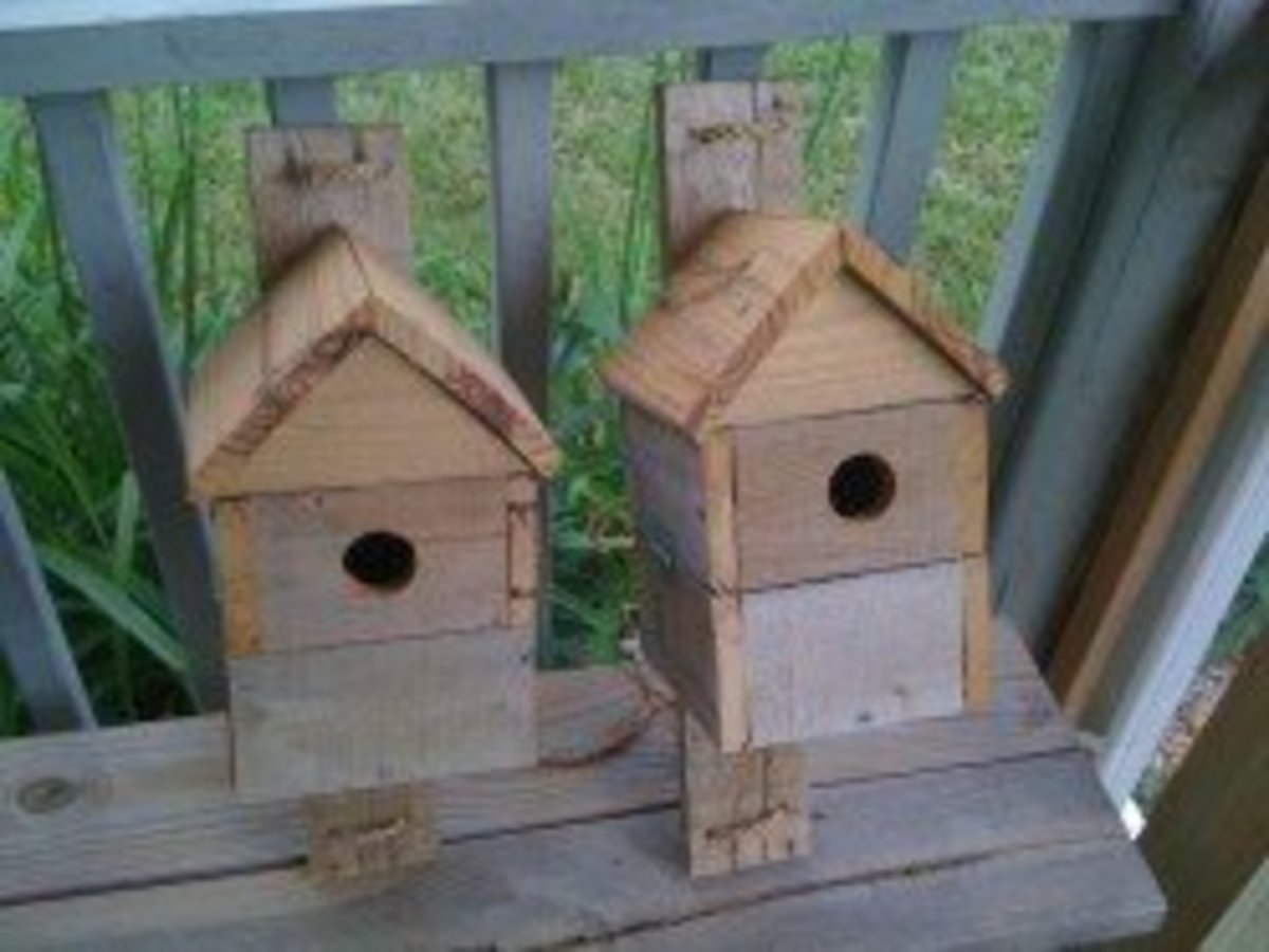 Two birds with one stone or two bird houses from one one pallet?  These reclaimed pallet wood birdhouses are durable and have rustic charm.