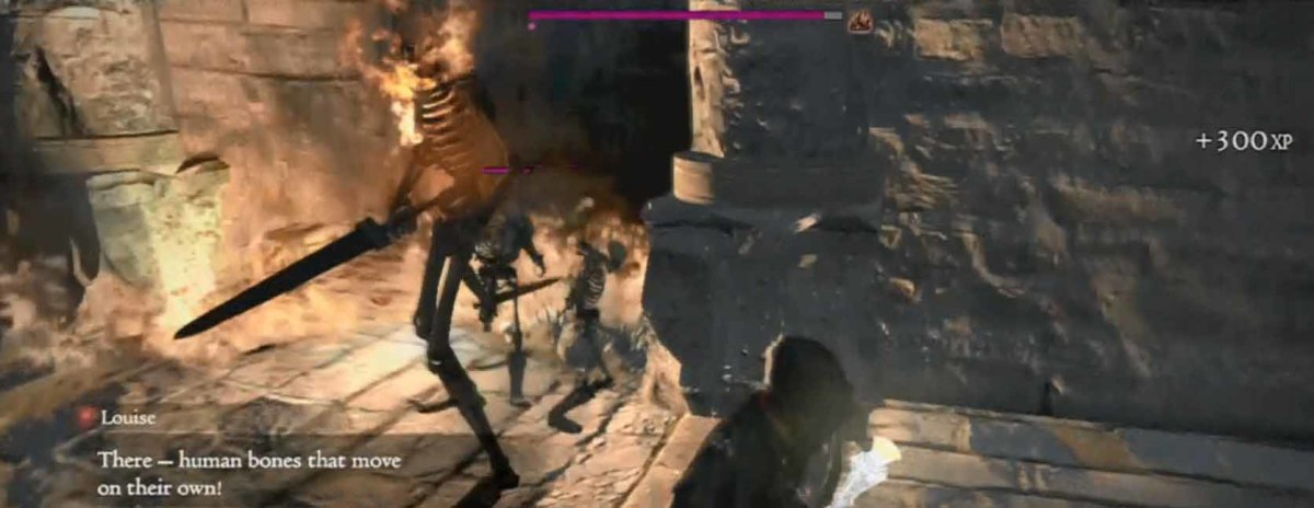 Dragon's Dogma Ward of Regret defeat the skeleton brute and its minions, using fire spells and swiftly running around and avoiding their attacks.