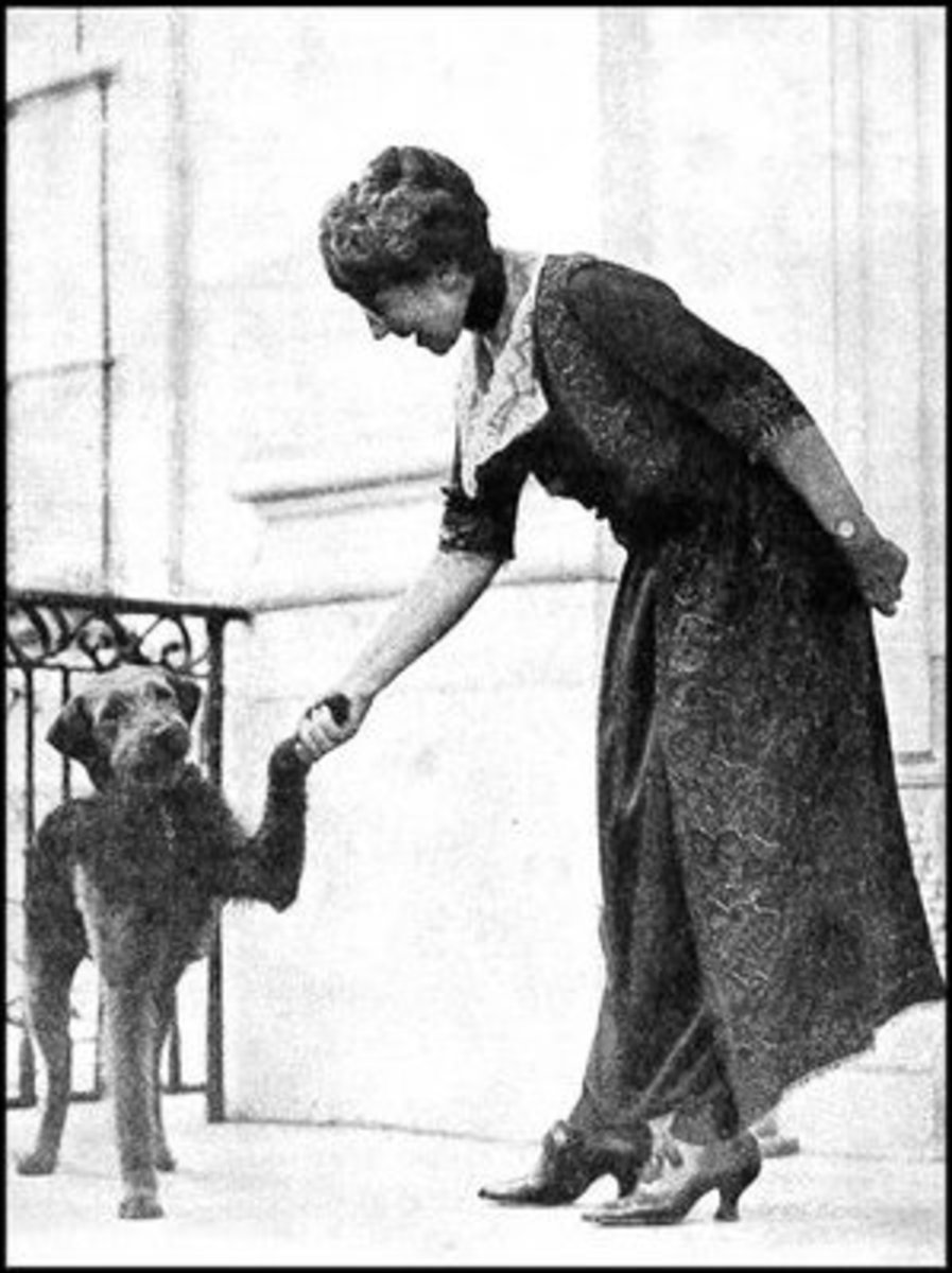 Mrs. Harding was an advocate for the humane rights of animals.