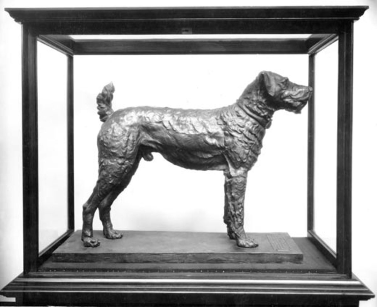 Laddie Boy is immortalized in 103.5 pounds of melted copper pennies in a life size statue to honor President Warren Harding's dog.