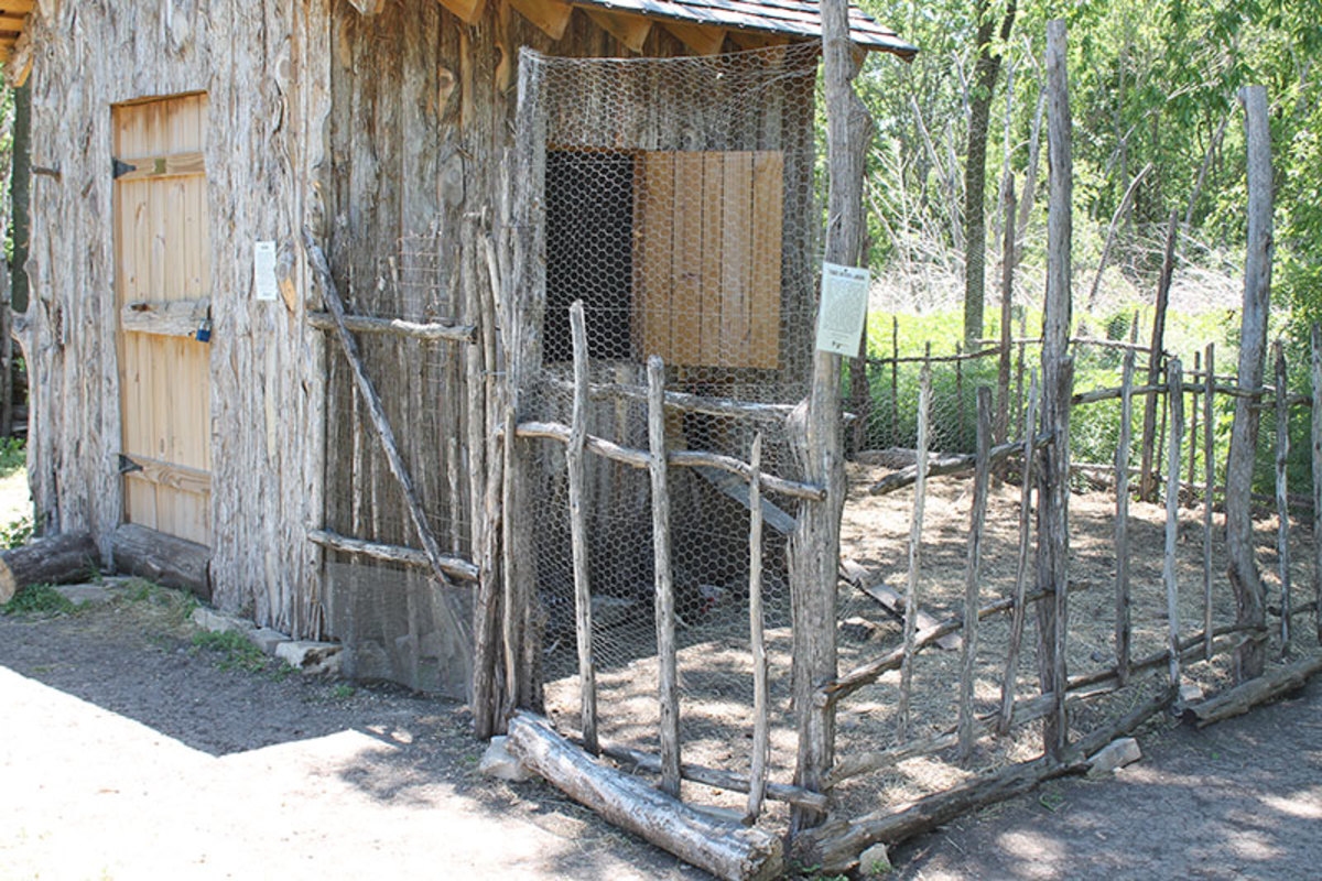 Chicken coop and pen made very uniform.