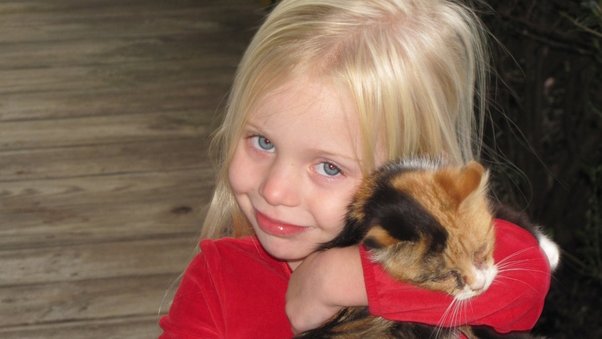 Little blond girl and her kitty