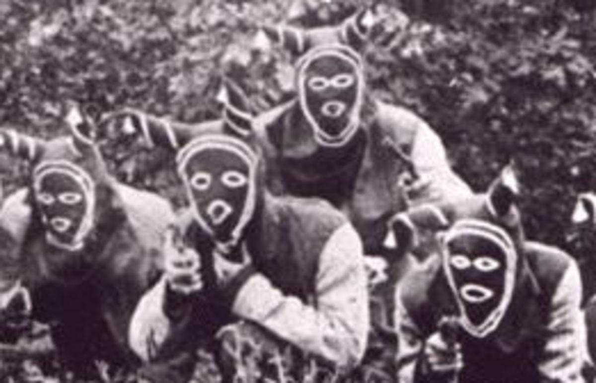 Bald Knobbers Gang