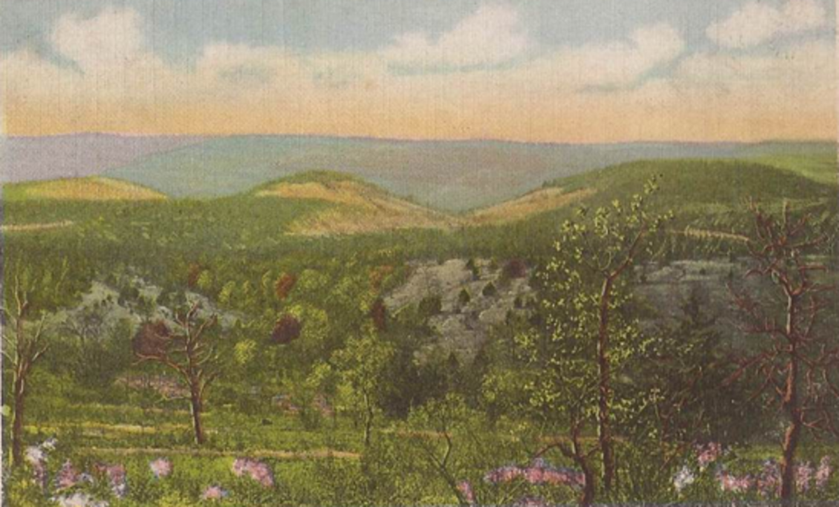 Old Postcard of Mutton Hollow