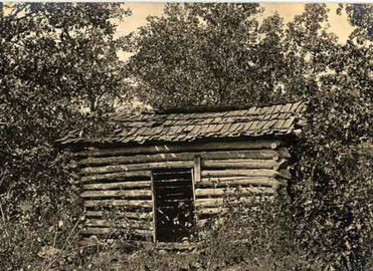 Cabin in Mutton Hollow