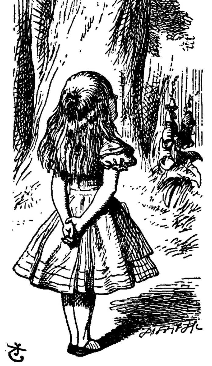 Through the Looking Glass:  ALice