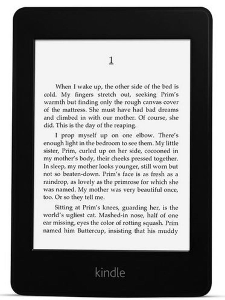 Amazon Kindle e-Books: To Self Publish or Not to Self Publish