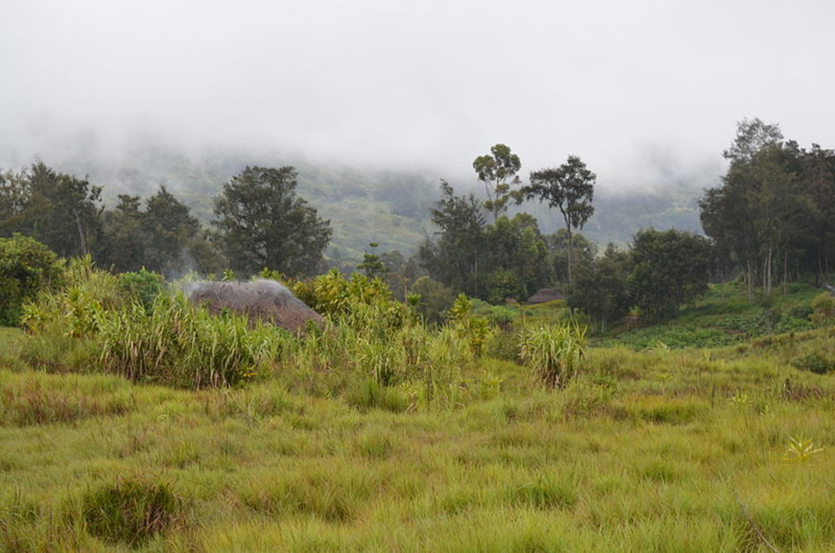 PNG. Source: Russavia WMC.