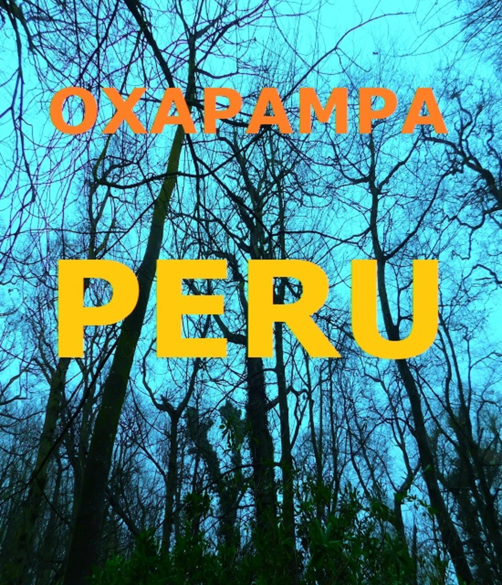 What Is so Unique About Oxapampa in Peru?