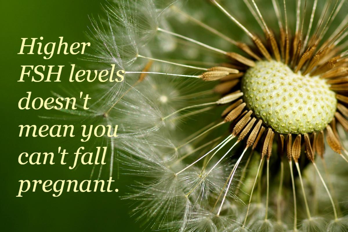 fsh-levels-and-fertility