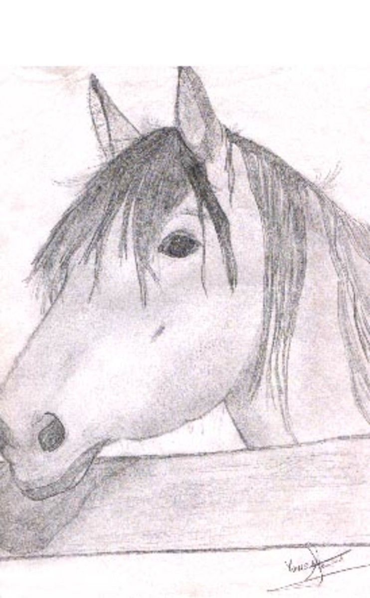 © 2007 Horse by Barn (Sketch scanned in)