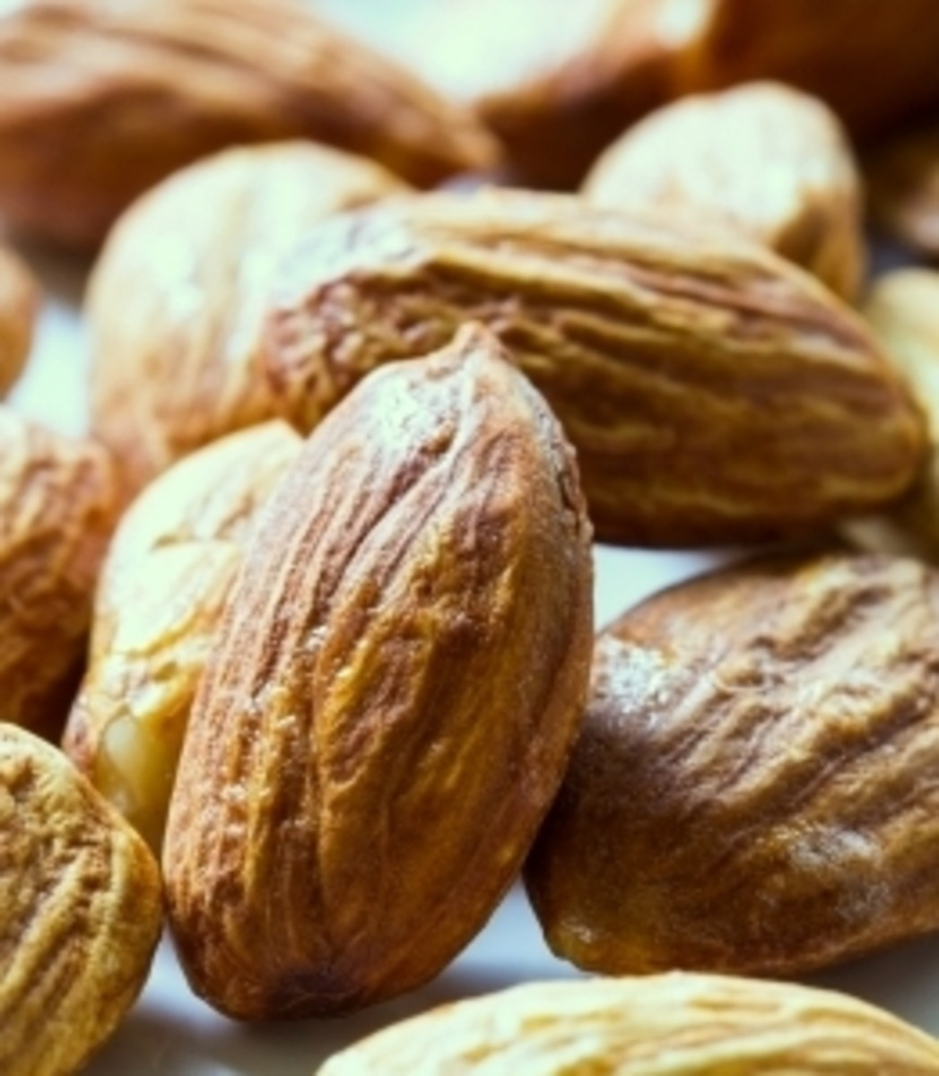1 ounce almonds=6 grams of protein