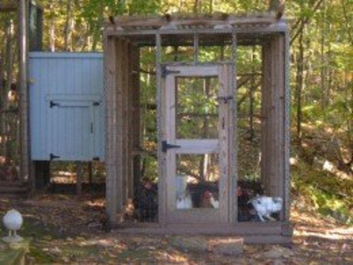 Our Urban Chicken Coop