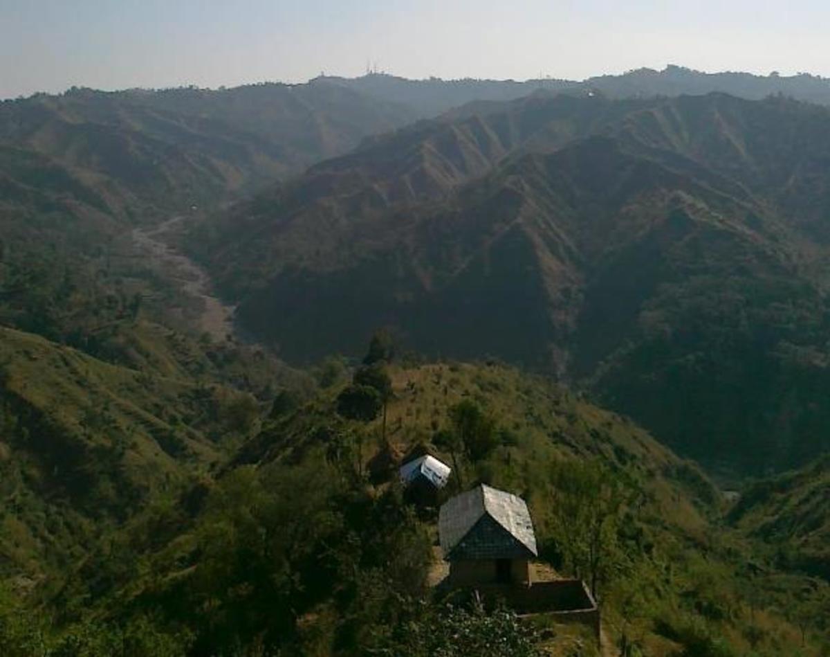 Rural Mandi