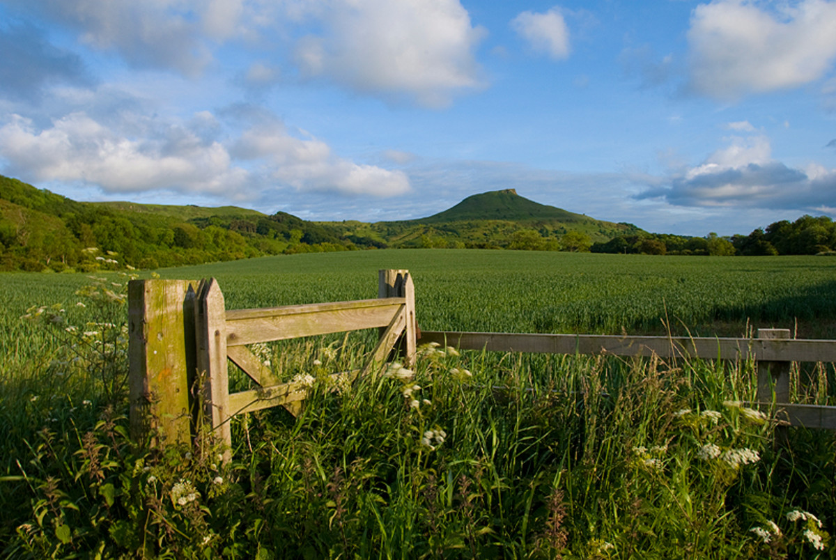 The view across from Guisborough Forest to Roseberry Topping in the west - little remains of the ironstone workings in this area, a series of small mines such as Cod Hill, Ayton Moor and Roseberry