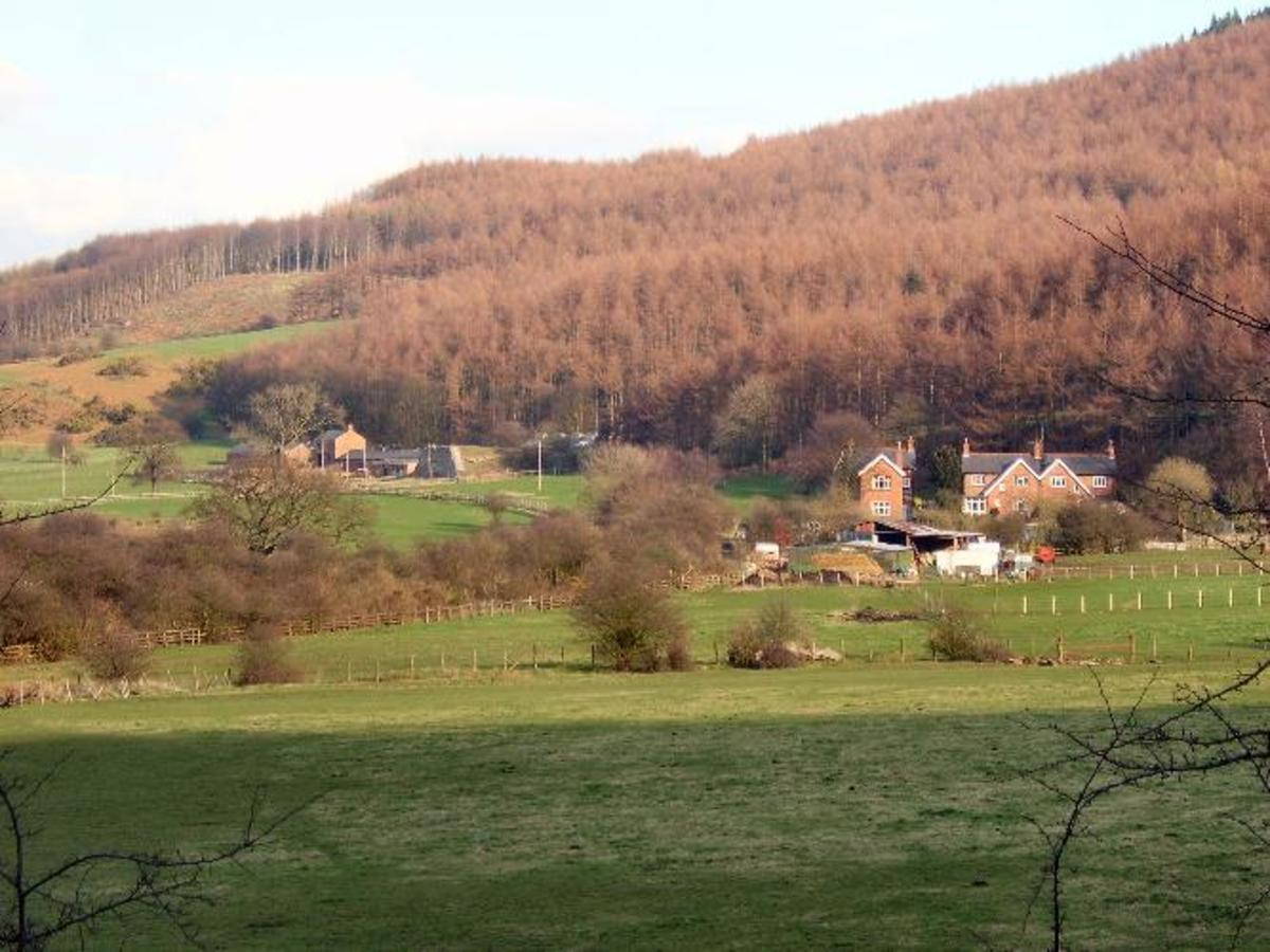 This is the site of the Belmont Mine to the south-east of Guisborough