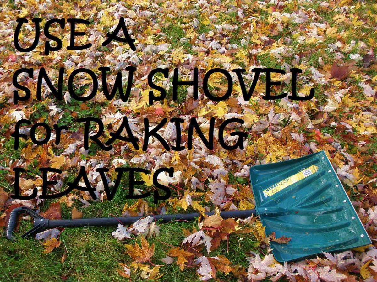 How to rake leaves the easy way - using a shovel!