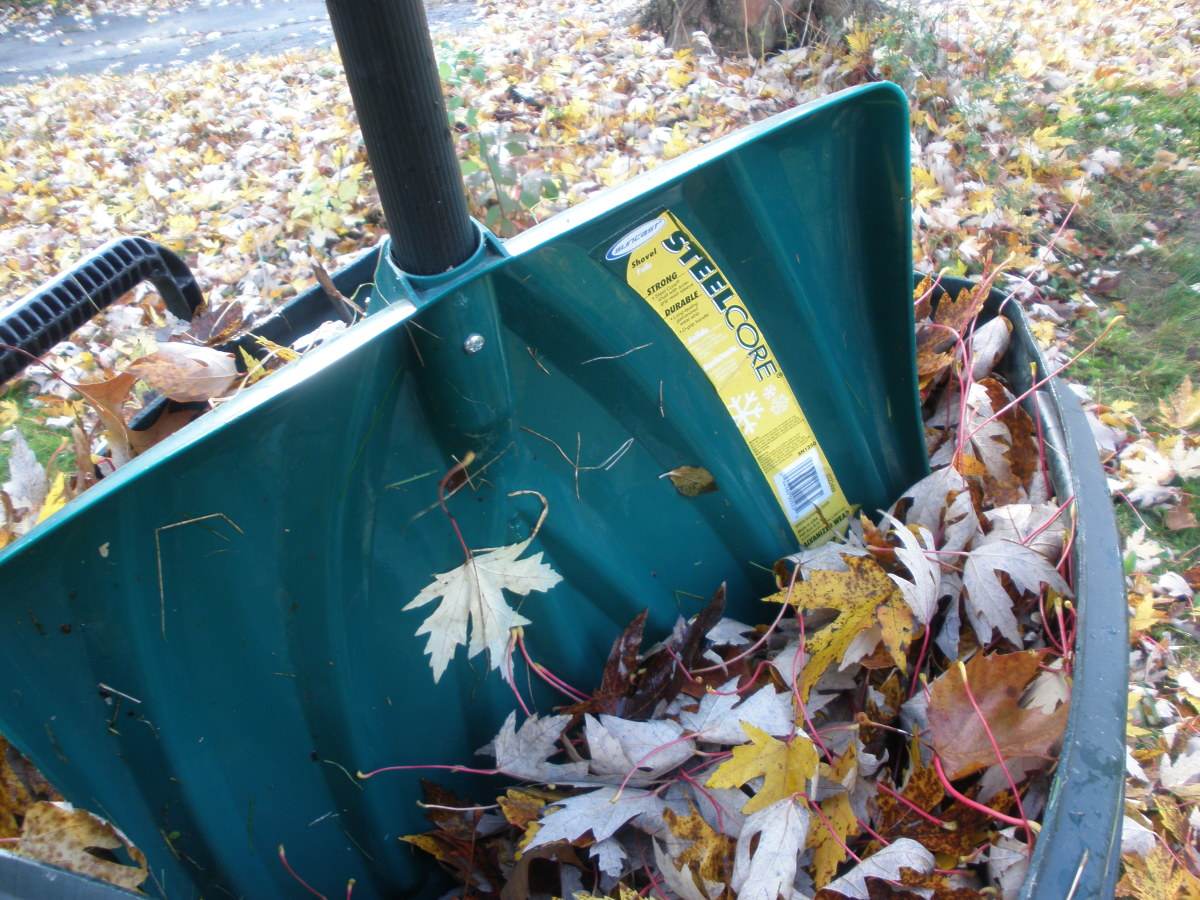 Use the shovel to pack down the leaves in your yard waste container.