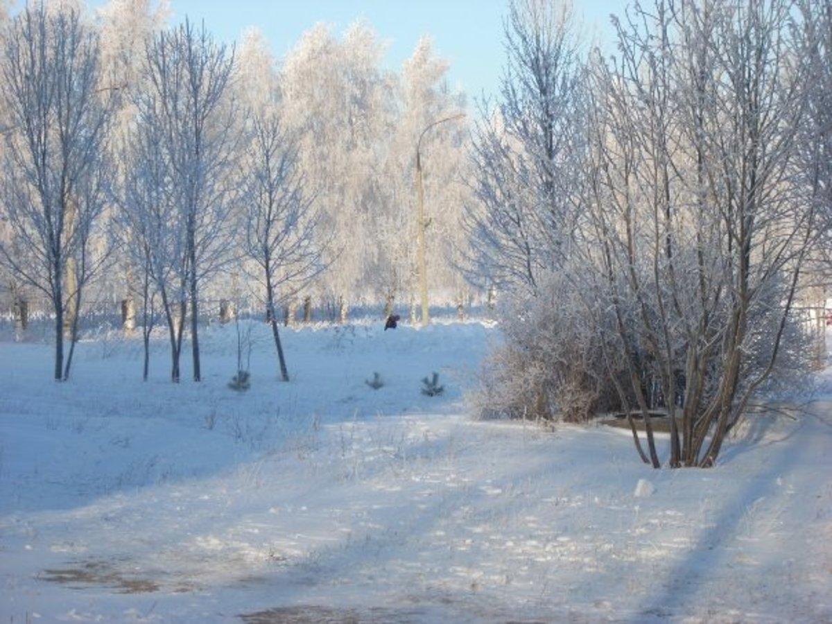Landscape @ Volzhanka Temp 27° Below Zero