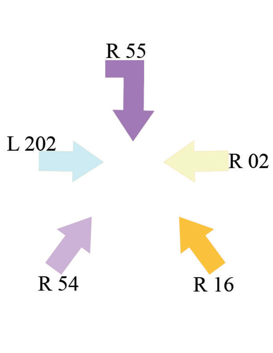 Example Color Projection Sheet. 5-Point Lighting.