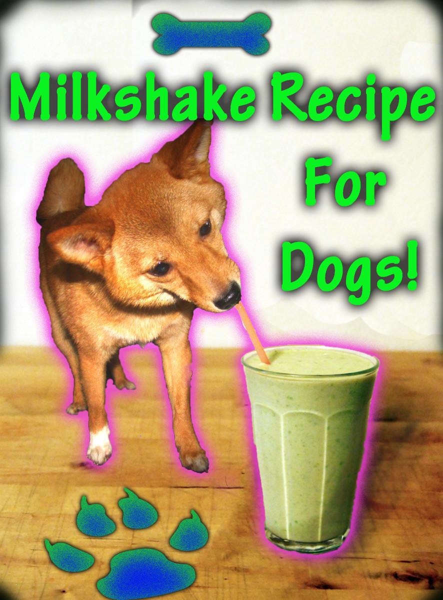 Easy Summer Doggy Milkshake Recipe for Your Puppy