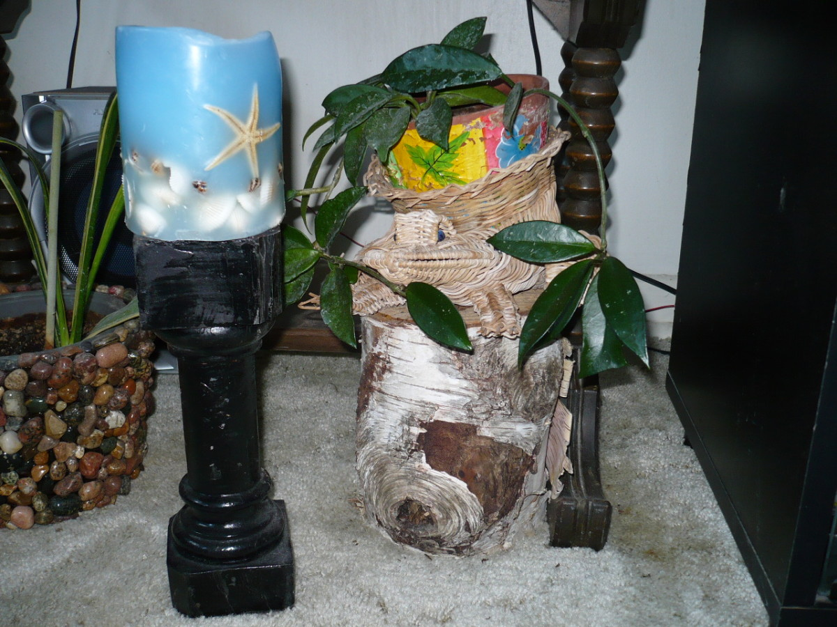 Trash to Garden Art