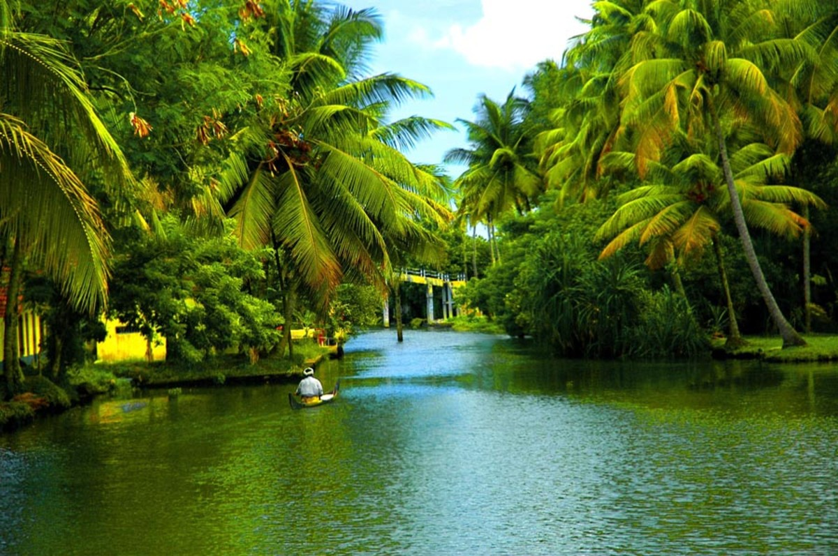 A Backwater Canal In Alappuzha.