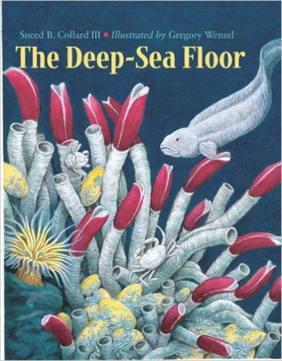 The Deep-Sea Floor by Sneed B. Collard III