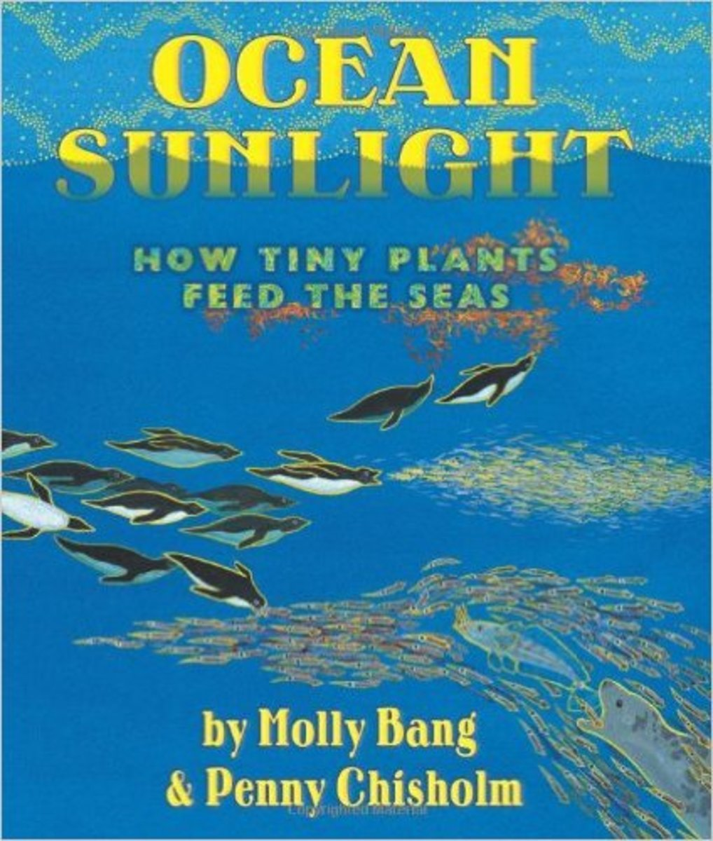 Ocean Sunlight: How Tiny Plants Feed the Seas by Molly Bang  - Images are from amazon.com unless otherwise noted.