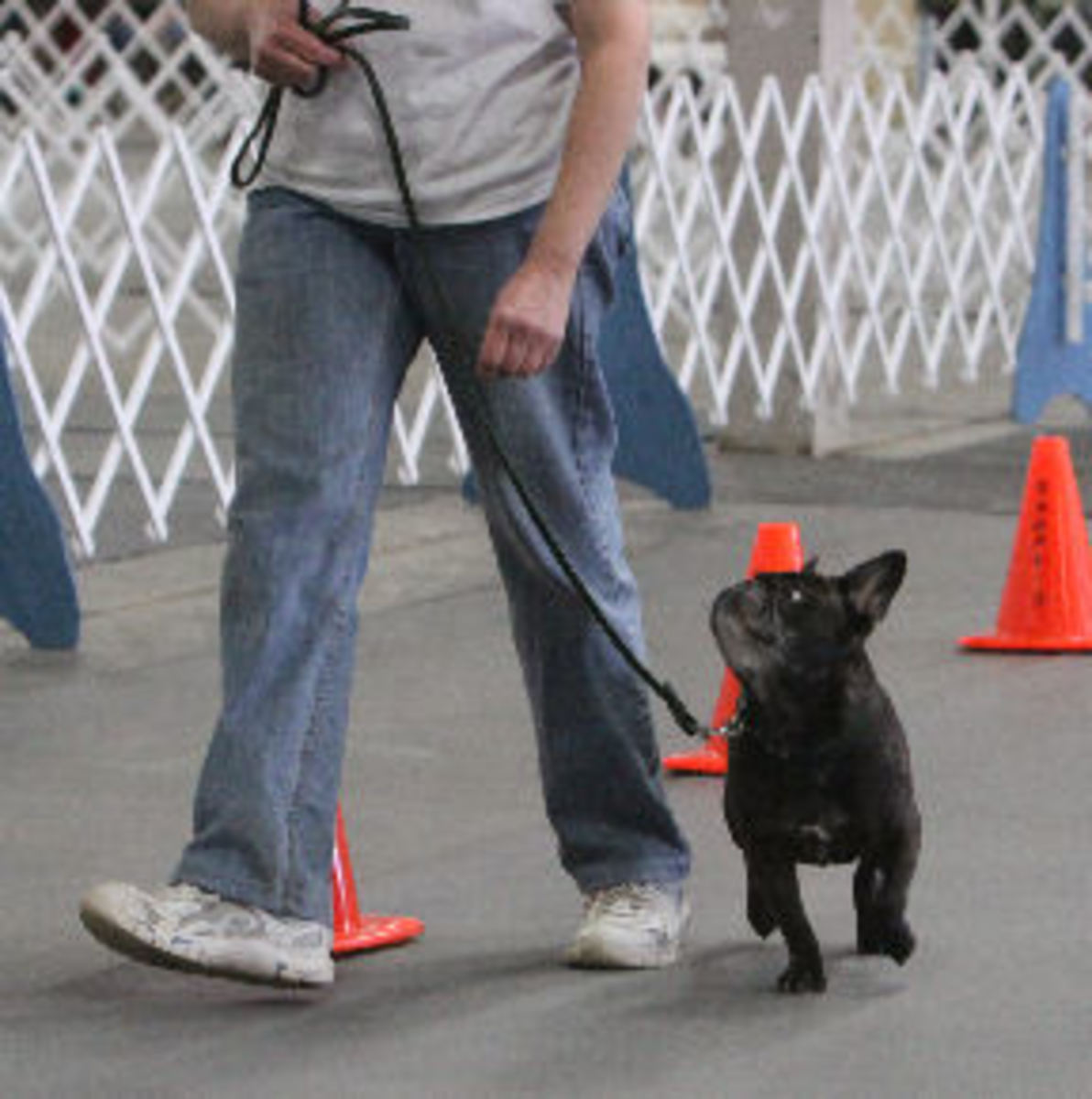 Dax and me competing in Rally Obedience.