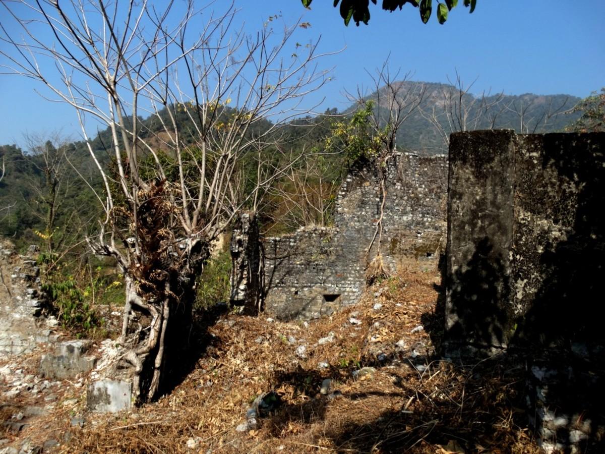 The ruins at Buxa Fort 2