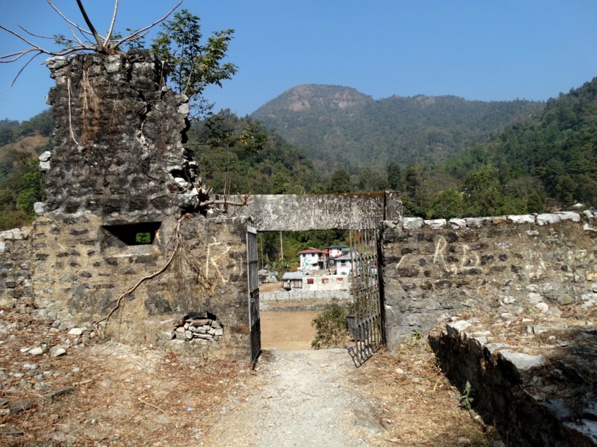 The main entry