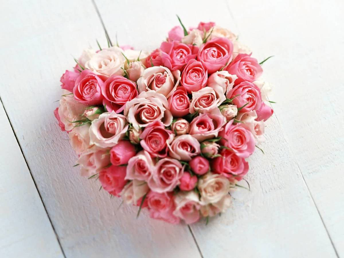picture of heart of pink roses