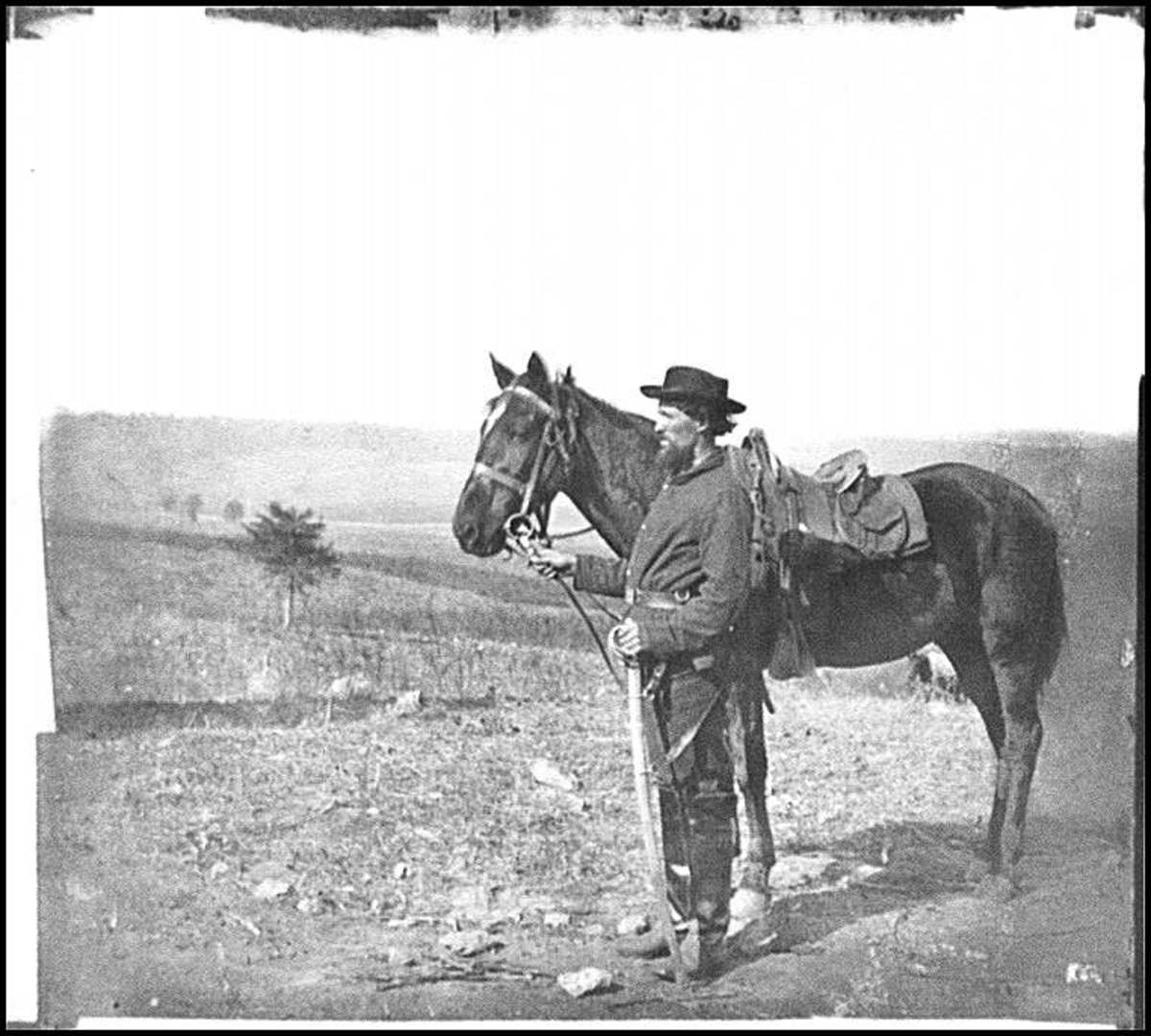 Union Cavalryman and his mount