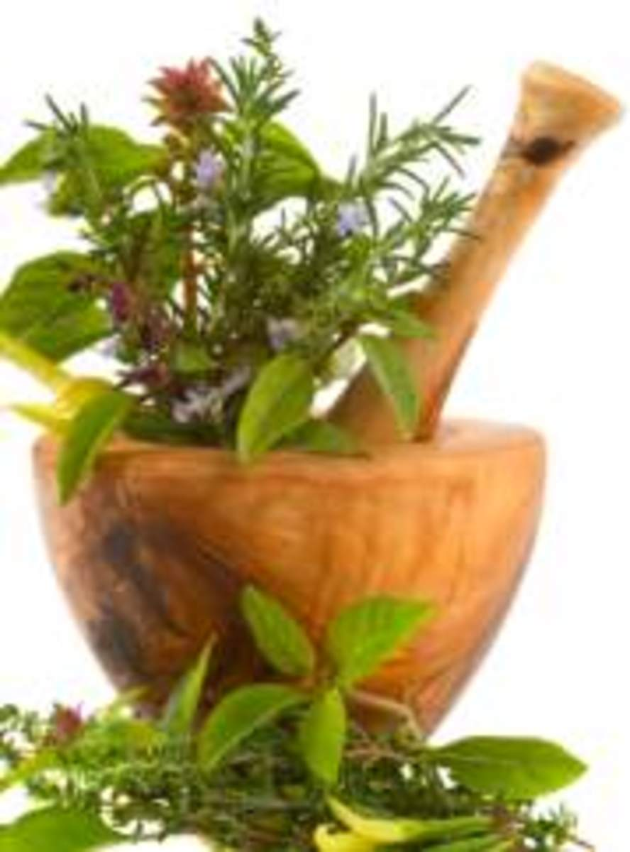 healthy-herbs-to-add-to-your-meals