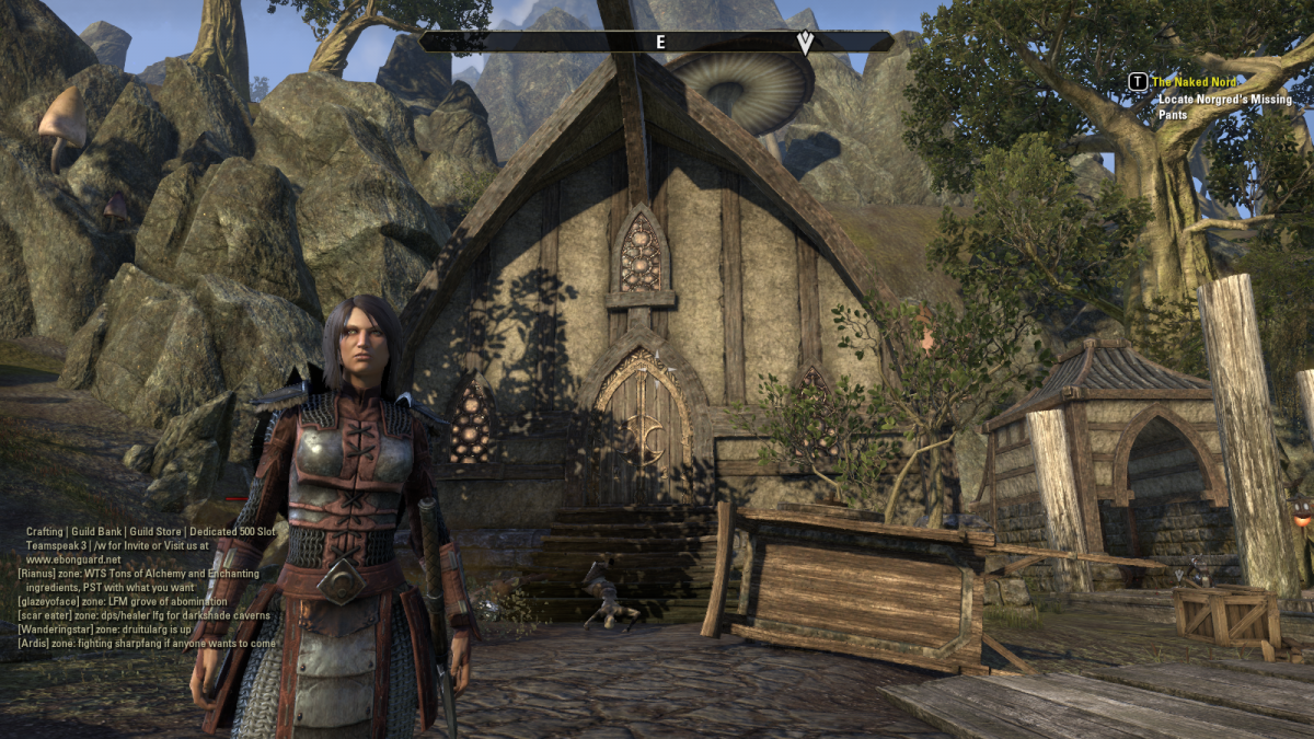 Trying to locate some missing closing for The Naked Nord in The Elder Scrolls Online.
