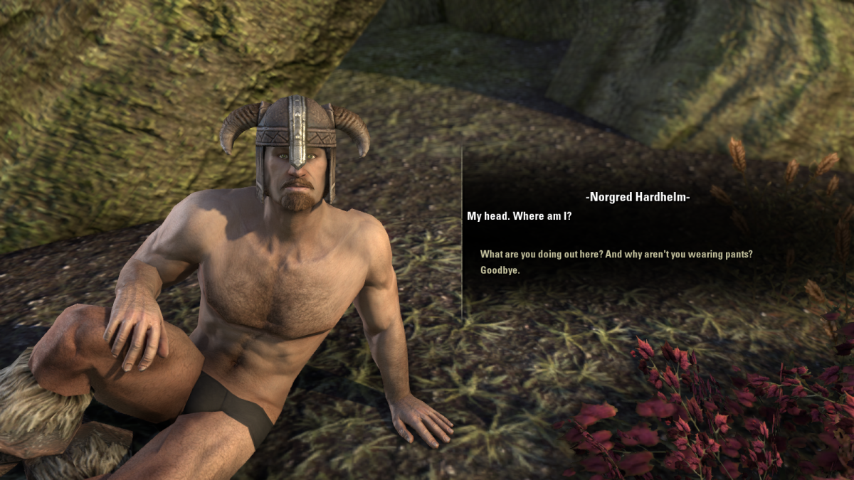 The Elder Scrolls Online Walkthrough - Narsis: The Naked Nord, You Have to Break a Few