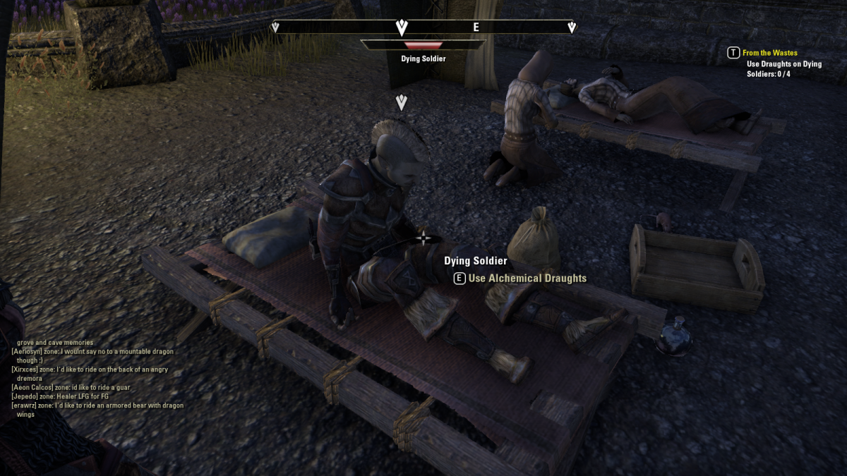 Speaking to an injured soldier during the siege of Iliath Temple in The Elder Scrolls Online's From the Wastes quest.