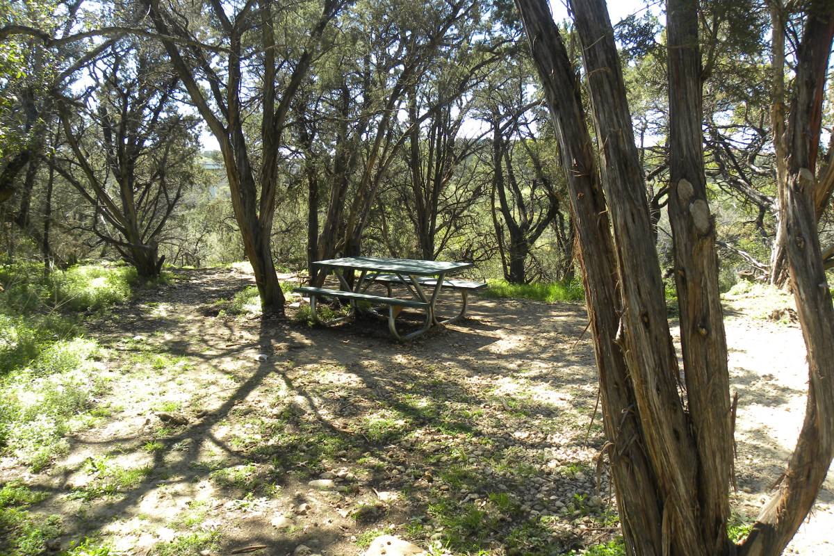 Picnic areas at Barton Creek Greenbelt
