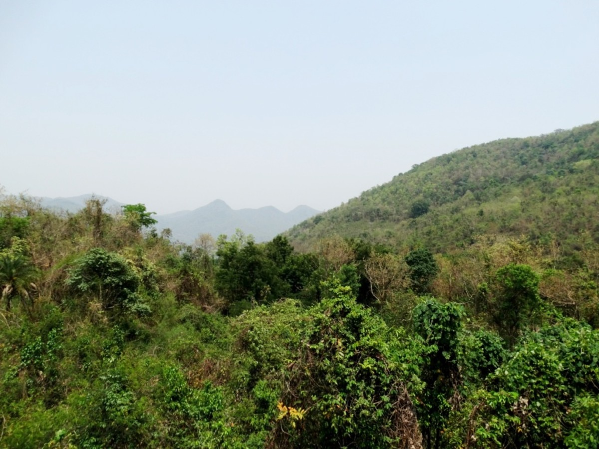 The hills of Taptapani