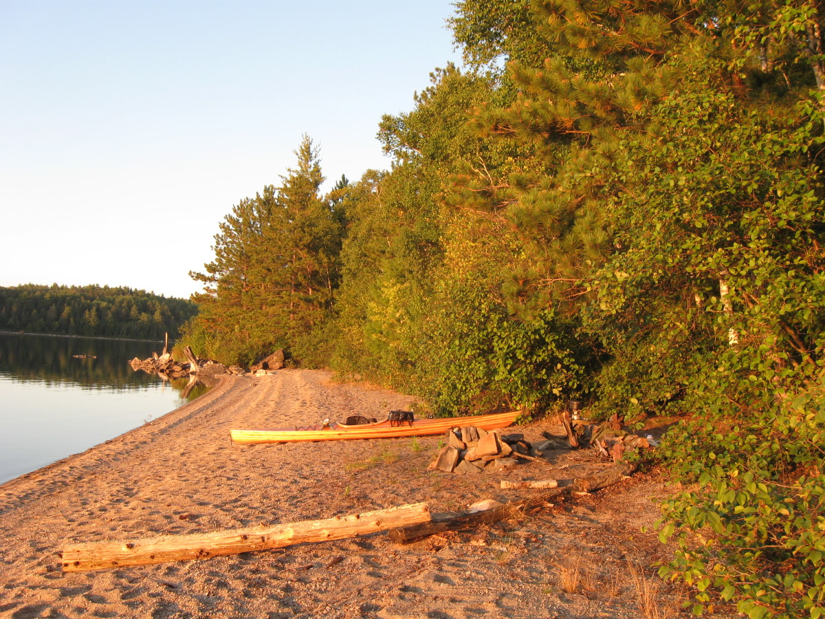 Building a Cedar Strip Kayak: The Details: COST